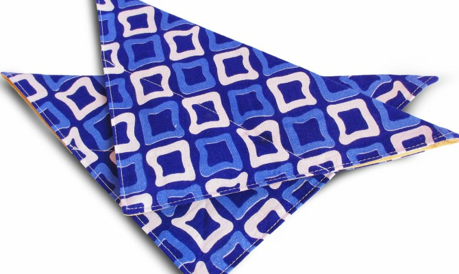 bandana azul para perros