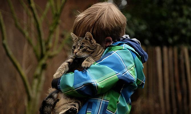 Bienestar animal, una responsabilidad de todos